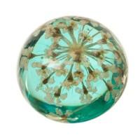 Cabochon mit getrockneter Blume Blüten, rund, Durchmesser 12 mm, hellblau