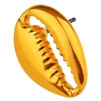 Ohrring Cowrie Muschel 18 mm mit Titanstift, vergoldet