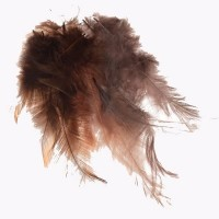 Federn, 9 - 15 cm Länge, braun, 15 Stück
