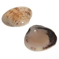 Muschelanhänger, ca. 24 -29 x 30 -35 mm