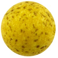Polaris gala sweet, Kugel, 10 mm, olivgrün